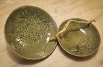 Due bellissimi piatti Celadon di Alessandra.